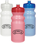 20oz Frosted Fitness Bottles